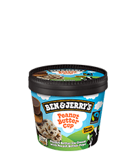 Ben & Jerry's mini cups